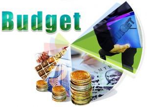 budget-1-300x220