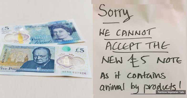 pound-ban-jpg-image-784-410