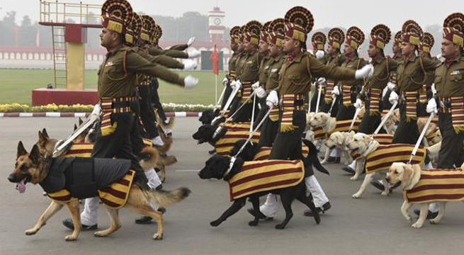 r-day-pets