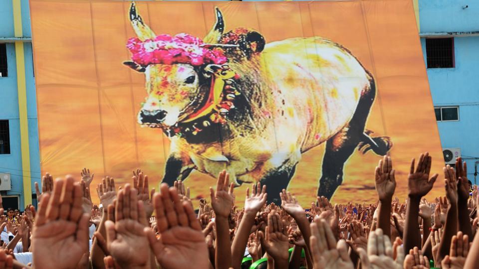 ജെല്ലിക്കെട്ട്: തമിഴ്നാടിന് സുപ്രീംകോടതിയുടെ രൂക്ഷ വിമര്ശം
