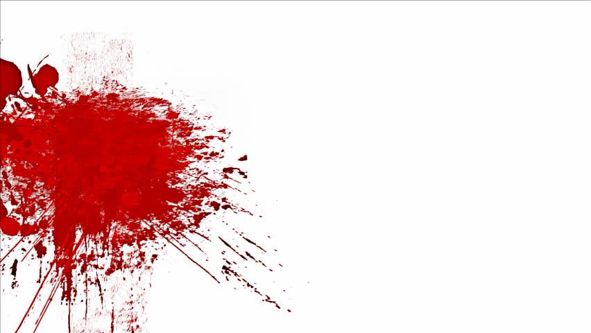തൊണ്ടയാട് ബൈപ്പാസില് ബസ്സപകടം: കുട്ടി മരിച്ചു