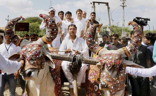 rahul-gandhi-bullock-cart-pti_650x400_71506339768